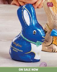 Dairyfine Easter Bunny