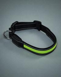 Pet Collection Flashing Dog Collar