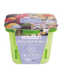 The Green Garden Spring Bulb Baskets