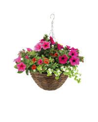 Irish Premium Rattan Hanging Basket