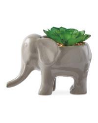 Kirkton House Elephant Plant Pot